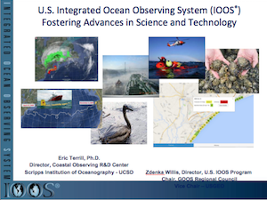 U.S. Integrated Ocean Observing System (IOOS) High Frequency (HF) Radar Network