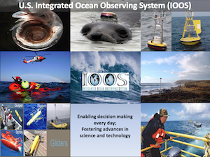 High-Level Overview of U.S. IOOS National Successes