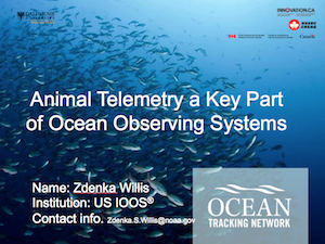 Animal Telemetry a Key Part of Ocean Observing Systems