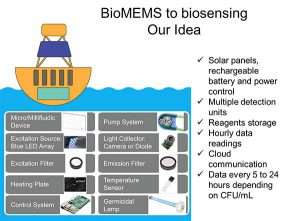 BioMEMS slide from Ignite presentation