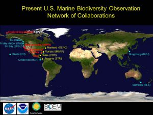 Current U.S. MBON Collaborations
