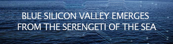 Graphic banner for Blue SIlicon Valley town hall
