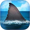 SharkNet app icon