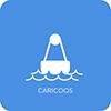 CariCOOS App Icon