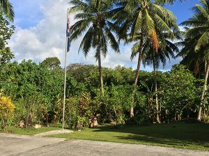 Palm trees at the entrance to a naval installation on Pohnpei
