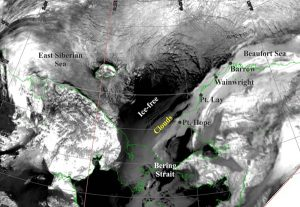 November 24, 2013 AVHRR image illustrating the differences in ice cover on the East Siberian, Chukchi, and Alaskan Beaufort seas.