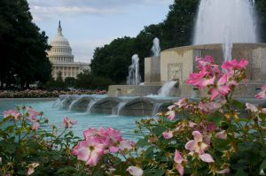 capitol_spring_fountain