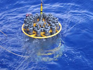 Ocean Enterprise Study