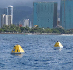 Prototype DIC buoy next to PacIOOS CO2 buoy off the south shore of O'ahu. Credit: Dr. De Carlo