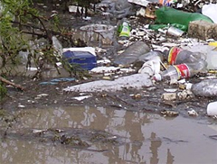 Water quality - trash in the water.