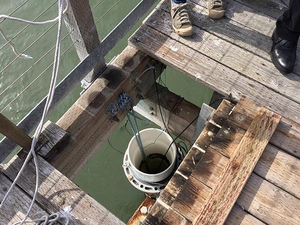 The YSI water quality sensor. Photo Credit: IOOS/NOAA