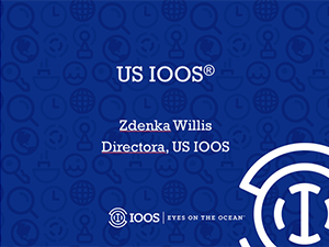 U.S. IOOS Overview (in Spanish)