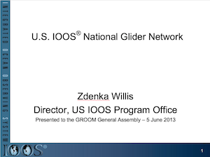 U.S. IOOS National Glider Network