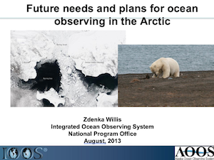 Future Needs and Plans for Ocean Observing in the Arctic