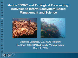 "Marine ""BON"" and Ecological Forecasting: Activities to Inform Ecosystem-Based Management and Science"