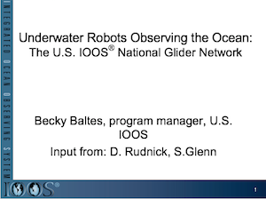 Underwater Robots Observing the Ocean: The U.S. IOOS National Glider Network