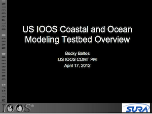 US. IOOS Coastal and Ocean Modeling Testbed Overview